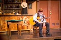Cowboy en veedrijfsters Stock Afbeelding