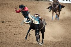 Cowboy falling off a bucking bronco Stock Photos