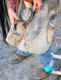 Cowboy farrier working. Cowboy farrier working on a horseshoe on the ranch outdoors Royalty Free Stock Image