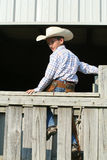 Cowboy on fence Royalty Free Stock Photo