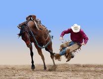 Cowboy gesträubt von einem sträubenden wilden Pferd Lizenzfreies Stockbild