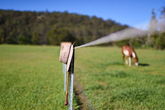 Cowboy hat and whip resting on fence post - horse in background. Royalty Free Stock Photography