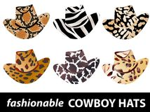 Cowboy hats Royalty Free Stock Photos