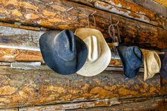 Cowboy hats on a log cabin wall Stock Image