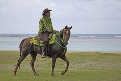 Cowboy hawaiano Fotografia Stock Libera da Diritti