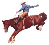 Cowboy het berijden paard bij rodeo. Royalty-vrije Stock Foto