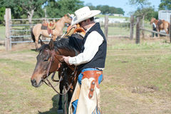 Cowboy and his horse Stock Photography