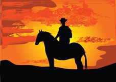 Cowboy on hors Royalty Free Stock Image