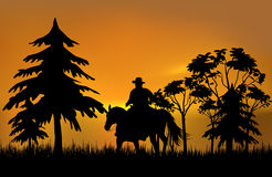 Cowboy on a horse. Over sunset Stock Photo