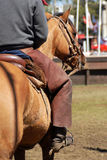 Cowboy on a horse Royalty Free Stock Photos