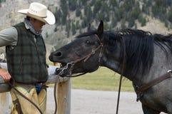 Cowboy/Horse Conversation. A cowboy enjoying a conversation with his horse Stock Photos