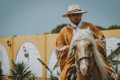 Cowboy on horse with copy space stock image