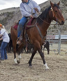 Cowboy on horse pulling rope Royalty Free Stock Photo