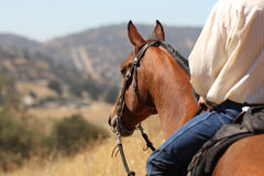 Cowboy on a horse. A cowboy on a horse riding in the mountains stock photo