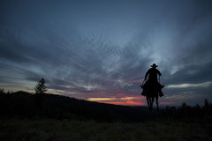 Cowboy on a horse Royalty Free Stock Image