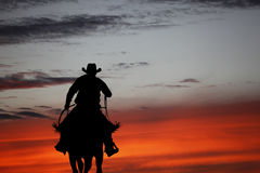 Cowboy on a horse Stock Photos