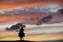 Cowboy on a horse Royalty Free Stock Images