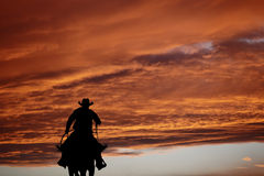 Cowboy on a horse. Cowboy silhouette on a horse during nice sunset Royalty Free Stock Photos
