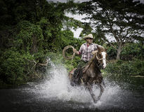 Cowboy on Horse in Water, Cuba Royalty Free Stock Photo
