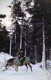 Cowboy in i snöig liggande arkivbild