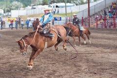 Cowboy kämpft, um auf sträubendem Pferd am Sattel Broncwettbewerb zu bleiben Stockfoto