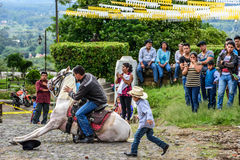 Cowboy makes horse lie down in village, Guatemala Royalty Free Stock Photo
