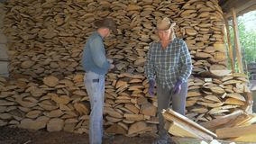 Cowboy man and a woman put together firewood in the woodshed helping each other. Courageous cowboy man and mature woman on a ranch in a woodshed together stock video