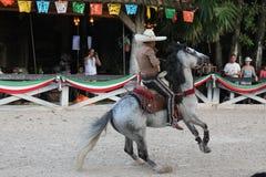 Cowboy mexicain montrant ses qualifications acrobatiques Images stock