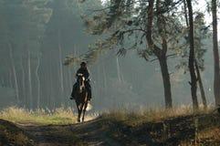 Cowboy mit einem Pferd Stockfotografie