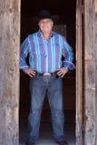Cowboy mit Hut Lizenzfreie Stockfotografie