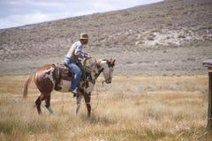Cowboy moderne de jour Image libre de droits