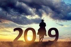 Cowboy montant un cheval dans le coucher du soleil Expédiez à la nouvelle année 2019 photographie stock