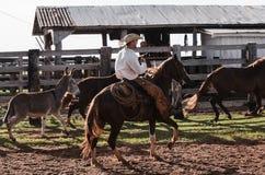 Cowboy montant un cheval sur le corral d'une ferme image libre de droits