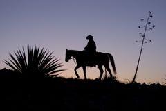Cowboy mostrado em silhueta Foto de Stock Royalty Free