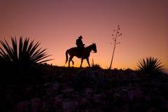 Cowboy mostrado em silhueta Imagem de Stock