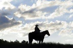 Cowboy mostrado em silhueta Fotos de Stock