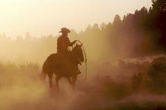 Cowboy nella polvere Fotografia Stock Libera da Diritti