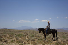 Cowboy no deserto Imagens de Stock Royalty Free