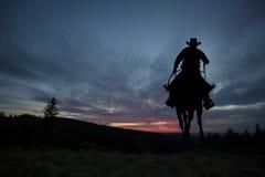 Cowboy op een paard stock afbeelding
