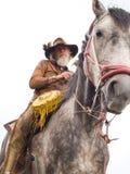 Cowboy op geïsoleerdu horseback Royalty-vrije Stock Fotografie