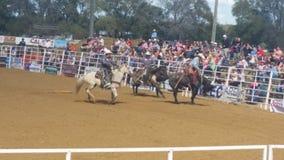 Cowboy op paard Stock Foto's