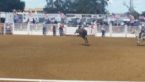 Cowboy op paard Royalty-vrije Stock Foto
