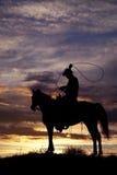 Cowboy på hästsvängrep fotografering för bildbyråer