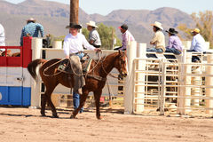 Cowboy participates in bucking horse competition. Sacaton, Arizona United States, March 16, 2014: Mul-Chu-Tha Rodeo contestants - Bucking horse Bronc busting Stock Images