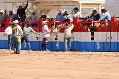A Cowboy participates in bucking horse competition. Sacaton, Arizona United States, March 16, 2014: Mul-Chu-Tha Rodeo contestants - Bucking horse Bronc busting Stock Photo