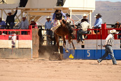 A Cowboy participates in bucking horse competition. Sacaton, Arizona United States, March 16, 2014: Mul-Chu-Tha Rodeo contestants - Bucking horse Bronc busting Royalty Free Stock Image