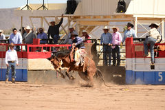 A Cowboy participates in bucking horse competition. Sacaton, Arizona United States, March 16, 2014: Mul-Chu-Tha Rodeo contestants - Bucking horse Bronc busting Stock Photos