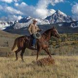 Cowboy reitet Pferd über historischer letzter Dollar-Ranch auf Hastings Stockbilder