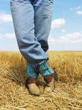 Cowboy restant dans le domaine. Images libres de droits