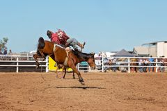 Bareback Bucking Bronc Riding At Country Rodeo. Cowboy rides a bucking horse in bareback bronc event at a country rodeo Royalty Free Stock Images